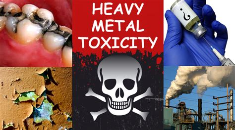 detox heavy metals